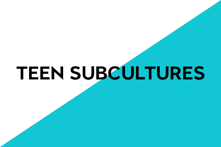 5. Youth subculture