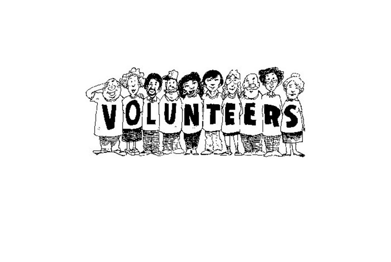 The management of effective volunteer projects in educational institutions